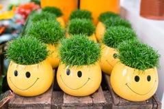 Желтые цветочные горшки с smilie и зеленой травой Стоковые Изображения RF