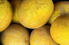 Желтые дыни на продаже Стоковое Фото