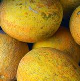 Желтые дыни на продаже Стоковое фото RF