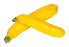Желтые courgettes Стоковые Изображения RF