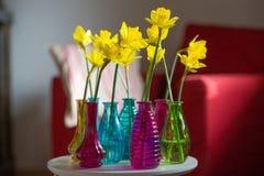 Желтые daffodils в интерьере Стоковое Изображение RF