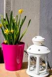Желтые daffodils и белая лампа, натюрморт Стоковое Изображение