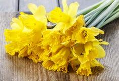 Желтые daffodils на деревянной предпосылке Стоковое фото RF