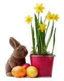 Желтые daffodils Стоковое Изображение