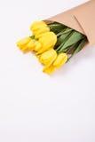 Желтый букет тюльпанов на белой предпосылке Стоковое Фото