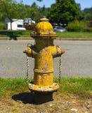 Желтый жидкостный огнетушитель с краской шелушения Стоковые Изображения