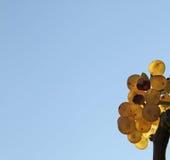 Желтый завтрак-обед виноградины Стоковые Фотографии RF