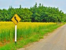 Желтый знак извилистой дороги стоковая фотография rf