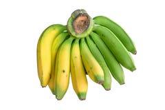Желтый зрелый изолят банана на белой предпосылке Стоковые Изображения RF