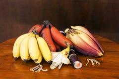 Желтый и красный банан с цветком банана и ручкой сахара камышовой Стоковое Фото