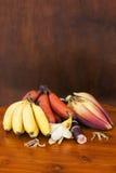 Желтый и красный банан с цветком банана и ручкой сахара камышовой Стоковые Фото