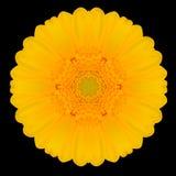 Желтый калейдоскоп мандалы цветка изолированный на черноте Стоковая Фотография