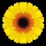 Желтый калейдоскоп мандалы цветка изолированный на черноте Стоковые Фото