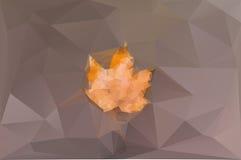 Желтый кленовый лист на коричневой предпосылке Стоковое Фото