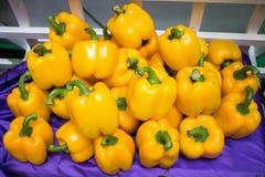 Желтый овощ болгарского перца Стоковые Изображения RF