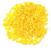 Желтый отрезок соь Стоковая Фотография