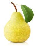 Желтый плодоовощ груши с лист на белизне Стоковое Фото