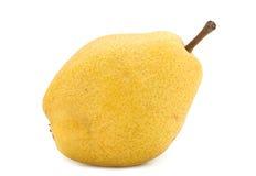 Желтый плодоовощ груши Стоковые Фото