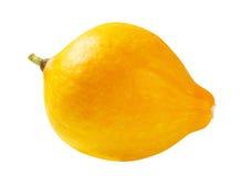 Желтый сквош Стоковые Изображения