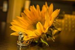 Желтый солнцецвет и обручальное кольцо Стоковое Изображение