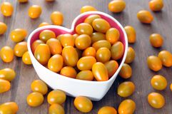 Желтый томат Стоковая Фотография