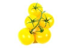 Желтый томат стоковое фото rf