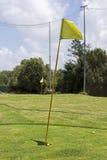 Желтый флаг гольфа на красивом поле для гольфа Стоковые Изображения RF