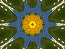 Желтый цветок Иллюстрация штока