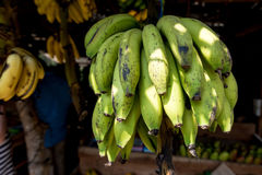 желтый цвет банана зеленый Стоковое фото RF