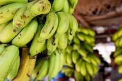 желтый цвет банана зеленый Стоковая Фотография