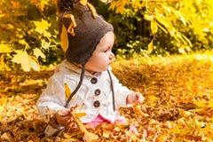 желтый цвет вала листьев падения предпосылки осени Стоковая Фотография