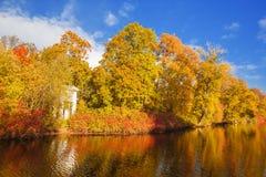 желтый цвет вала неба голубого пасмурного ландшафта поля падения сиротливый Парк, озеро, листья и солнце осени Стоковые Изображения