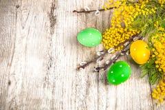 Желтый цвет весны взгляд сверху пасхальных яя цветет ветвь Стоковое фото RF