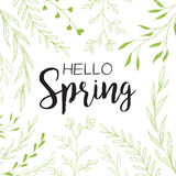 желтый цвет весны лужка одуванчиков предпосылки полный Стоковые Фотографии RF
