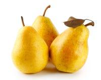 желтый цвет 3 груш зрелый Стоковое Фото