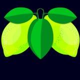 желтый цвет лимонов 2 Стоковое Изображение
