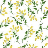 желтый цвет картины сердца цветков падения бабочки флористический Стоковые Изображения RF