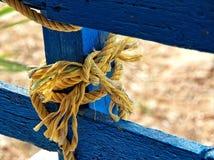 Желтый цвет на сини Стоковое Фото