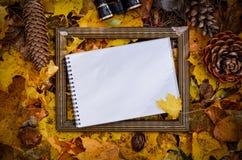 Желтый цвет осени выходит, космос предпосылки для текста Стоковое Фото