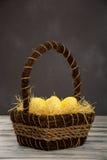 желтый цвет пасхального яйца Стоковая Фотография RF