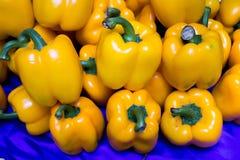 желтый цвет перца колокола Стоковые Изображения