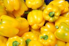 желтый цвет перцев колокола Стоковое Изображение