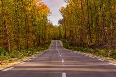 желтый цвет погоды валов солнца дороги осени зеленый Стоковые Фотографии RF