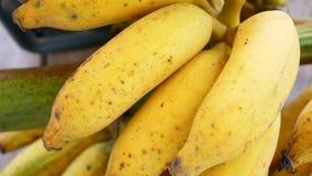 желтый цвет природы плодоовощ еды банана Стоковое Изображение