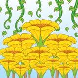 Желтый цвет цветка в саде Стоковые Изображения RF