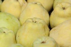 желтый цвет яблока близкий поднимающий вверх Стоковое фото RF