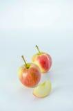 желтый цвет яблока красный Стоковое фото RF