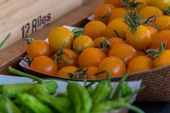 Желтый цвет Tomaotes рынка фермера & зеленые перцы Стоковые Изображения