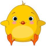 Желтый цыпленок Стоковое фото RF