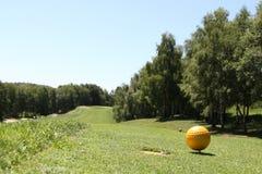 Желтый шарик Стоковые Изображения